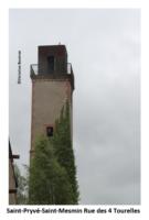 45 Saint-Pryvé-Saint-Mesmin-1